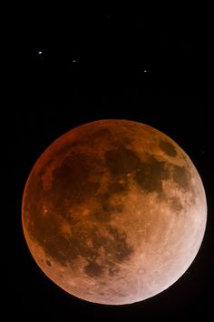 Lunar Eclipse | by Wayne Tilcock