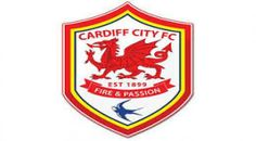 Buy Cardiff City Tickets | Buy Premier League Ticket - Football Ticket Hub