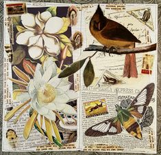 Art Journal Pages, Art Journals, Junk Journal, Journal Ideas, Book Page Art, Sheet Music Book, Glue Book, Collage Art, Collages