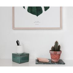 Cactus, ceramic and the Monstera Plant print
