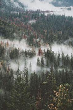 [Next destination] Hello November glad to have you here. Damos la bienvenida a un mes lleno de novedades #staytuned #nature