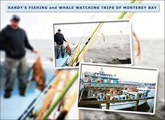 $49 for Salmon or Cod Fishing off Monterey Coast (Reg. $80)