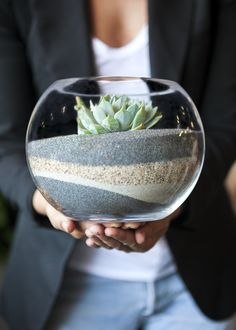 Join us for an afternoon of creating terrariums perfect for this Summer's heat wave! Our Los Angeles Baristas will lead a Desert Terrarium Workshop and show you how to create your very own drought-tolerant piece of living sand art. You don't want to miss this one