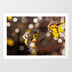in ICE  Art Print by Originalaufnahme - $18.00  #posters #artworks #graphic design #texture #inspiration #artists #stretched canvas #illustrations #room #products #pretty #colour #inspiration #Wall Art #Home Decor #Throw Pillows #Cards #Mugs #Shower Curtains #Wall Tapestries#Duvet Covers #Rugs #Wall Clocks #Art Prints #Framed Art Prints #Canvas Prints #Editions #Wall Tapestries