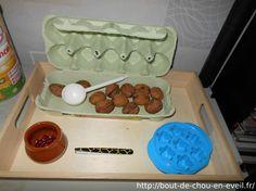 Placer une noix dans chaque case : 2 ans