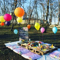 Piknik Konsepti Doğum Günü