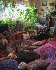 Hippy Room 635077984943787858 - hippie room decor 692780355167781563 – hippie bedroom 353603008244674016 – More plants! I WILL live in a forest! Hippie Bedroom Decor, Indie Room Decor, Room Design Bedroom, Room Ideas Bedroom, Aesthetic Room Decor, Indie Bedroom, Hippie Living Room, Hippie Bedrooms, Hippie Apartment Decor