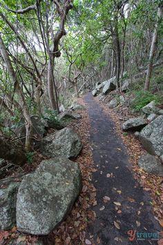 Burleigh Heads National Park, Gold Coast, Australia