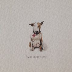 Day 350 : Hello. 13 x 26 mm. #365paintingsforants #miniature #watercolour #englishbullterrier (at Let's Go Bowling)