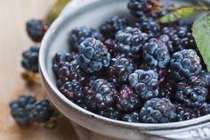 9 Fresh, Juicy Berry Varieties to Tempt Your Taste Buds: Blackberries