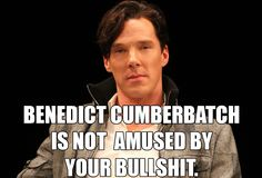 Benedict is not amused. Benedict Cumberbatch Sherlock, Sherlock Holmes, I Dont Have Friends, Mrs Hudson, I Gen, Fantasy Male, Say More, John Watson, Band Aid