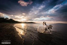 Ladies and gentlemen, it is with great pleasure and enthusiasm that we're showing you this spectacular experience: the Trash the Dress at Punta Ala, with Genny, Flavio and… few horses!  http://www.studiobonon.it