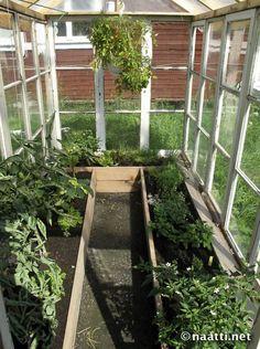 Kuvahaun tulos haulle kasvihuone ikkunoista