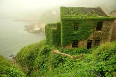 Gouqi Island is onderdeel van Shengsi Islands, een eilandengroep bij de Yangtze river. Vroeger leefden de mensen in deze verlaten stad voornamelijk van de visserij, maar door de industriële ontwikkelingen werden andere economieën gunstiger en uiteindelijk heeft de natuur dit dorpje overgenomen.