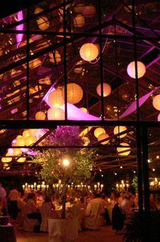 Lichtdesign Indian Summer für Hochzeit im Gewächshaus