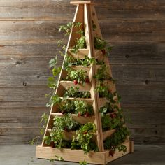 5930f7bbdcc0 Pyramid-shaped Cedar Terrace Planter for strawberries