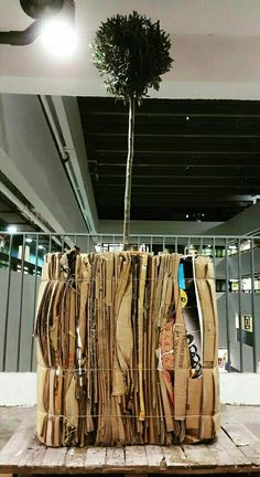 很少用陶瓷或攝影以外的做作品  在三月中的展覽作出新嘗試 作品:下世做樹  the tree odyssey 媒介:紙 樹 WWW.FACEBOOK.COM/QUABITAT #quabitat #jccac723 #joeyleung #fish #fishy #ceramics #pottery #clay #art #work #exhibition #hk #hongkong #藝術 #陶芸 #陶瓷 #陶器 #陶土 #陶 #瓷 #香港魚盤 #梁祖彝 #下世做樹  #the tree odyssey #紙 #樹 #paper #tree
