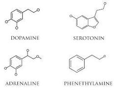 Image result for dopamine chemical structure
