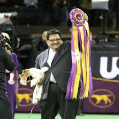 Meet the Westminster Winners | #WOOFipedia by The American Kennel Club #WOOF #WKCDogShow