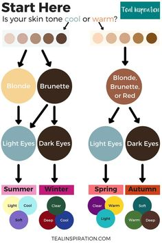 Seasonal Color Analysis Flowchart Do you ever feel yourself inexplicably drawn to certain colors and rubbed the wrong way by others? Deep Autumn Color Palette, Deep Winter Colors, Light Spring Palette, Summer Colors, Cool Skin Tone, Colors For Skin Tone, Hair Color For Warm Skin Tones, Neutral Skin Tone, Color Tones
