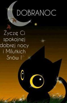 Nick Vujicic, Smiley, Funny, Google, Nighty Night, Fotografia, Sodas, Have A Good Night, Emoticon