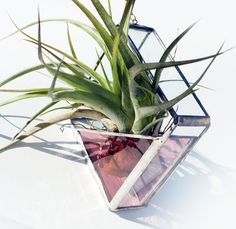 Stained Glass Air Plant Holder  Sconce  Small  Simple by LAGlass, $16.50