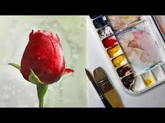 How to Paint a Red Rose bud Watercolor flower painting - YouTube