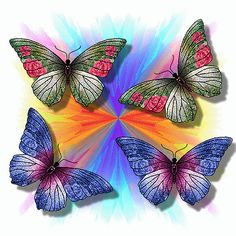 mariposas volando gifs - Buscar con Google