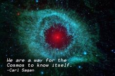 iron outer space CARL SAGAN INSPIRATIONAL quote poster 24X36 truth WISDOM