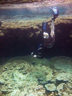 East Side Big Island - Pahoa: Kapoho Tide Pools
