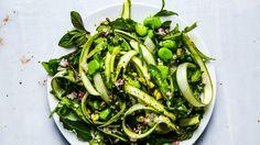 Fava Bean and Asparagus Salad Recipe   Bon Appetit