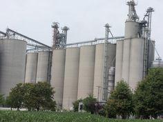 Tall  Co-Alliance grain elevator in Scircleville
