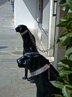 Diamond studded guard dogs