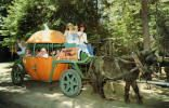 Pumpkin Carriage Santa's Village, Skyforest, CA late designed by my Dad, James A. Cinderella Pumpkin, Santa's Village, Pumpkin Carriage, Flying Squirrel, The Good Witch, Lake Arrowhead, Big Bear, Wonderful Places, Alice In Wonderland