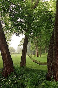 The hammock beckons. Sometimes our guests spend the entire afternoon...
