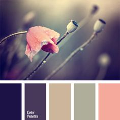 This delicate color palette is based on the contrast between dark violet and pink-coral. It can be used when selecting colors for home. In particular, these colors are well-suited for a bedroom. In the wardrobe of a young woman this palette will serve well for an evening dress.