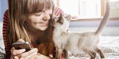 1. Lorsque votre chat fait le choix de boire ailleurs que dans son bol d'eau. via GIPHY  2. Lorsque le nouveau module pour votre chat n'est pas assez bien. View post on imgur.com   3. Lorsque v