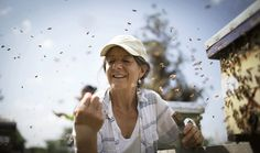 A scientist's aim: Save the bees | Star Tribune