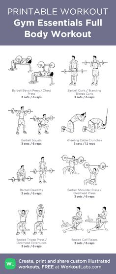 Gym Essentials Full Body Workout – illustrated exercise plan created at WorkoutLabs.com • Click for a printable PDF and to build your own #customworkout