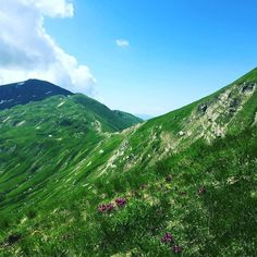 #landscape #view #natural #explore #running #travel #sport #hiking #tree #outdoors #mountains #sky #clouds #sun #sunset #sunshine #sunny #snow #fitness #nature #training #winter #animal #italy #mountain #witch #mothernature #forest #cloudporn #trees @explorecreateshare @hellowhimmsy @the_divine_nature @livemoreofficial @gorgeousplace @earth_escape @bestmountainartists @campwilderness @choosingmountains @outside_project @adventure_culture @wearetrailgirls @opt2travel