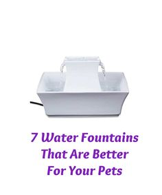 Fresh running water does have great appeal, even to pets.  That's why the latest trend in pet drinking is not the 'pet bowl,' it's the 'pet fountain,' where water flows constantly, or on demand. There are many fresh water fountains on the market, but I thought these 7 stood out as the best in terms of quality and design... see more at InventorSpot.com
