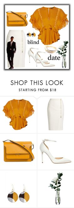 """""""Blind Date!"""" by susans-sg ❤ liked on Polyvore featuring Marissa Webb, MaxMara, Marni, Jimmy Choo, Jaeger, LSA International, Cartier and blinddate"""