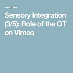 Sensory Integration (3/5): Role of the OT on Vimeo