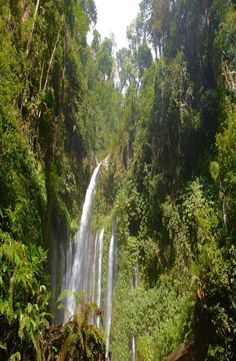 Sendang Gile Waterfall is located just north of Rinjani volcano, In the north region of the island of Lombok in Indonesia. Lombok, Volcano, Bali, Waterfall, Island, Pictures, Outdoor, Block Island, Outdoors