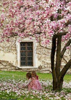 ?Estarán las pequeñas tratando de contar los pétalos de flores que se han caido del arbol ?