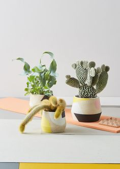 Milo Made Ceramics Pots