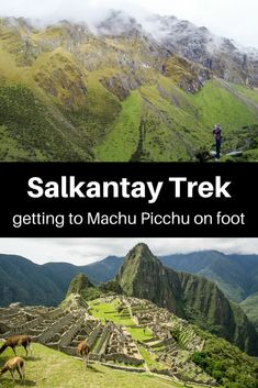 Reaching iconic Machu Picchu in the footsteps of Incas...The Salkantay Trek takes you there.| Salkantay trek | Machu Picchu trekking | Getting to Machu Picchu | Things to do in Peru |Salkantay trek tour | Peru Trekking | Things to do in Cusco | #cusco #salkantaytrek #machupicchutours #tbin