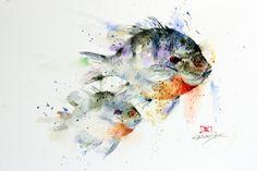 Bluegill - artist Dean Crouser #art #watercolor