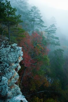 Fall in the Ozarks Mountains #Arkansas