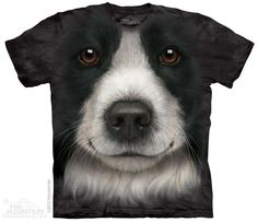 3606 Border Collie Face. Use code: welcome10 to get 10% off of $30 or more and as always free shipping at shaggychicoutfitters.com